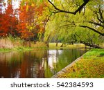 the colorful and beautiful... | Shutterstock . vector #542384593