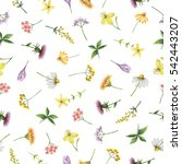 watercolor seamless pattern...   Shutterstock . vector #542443207