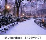 central park  new york city... | Shutterstock . vector #542494477