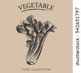 hand drawn green vegetables...