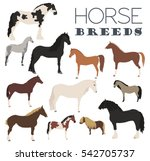 Horse Breeding Icon Set. Farm...