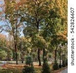 autumn in the city park | Shutterstock . vector #542826607