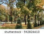 autumn in the city park | Shutterstock . vector #542826613