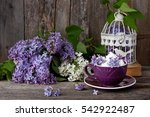 Still Life With Lilac Flowers...