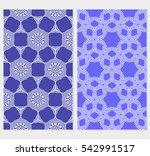set of vector seamless pattern... | Shutterstock .eps vector #542991517