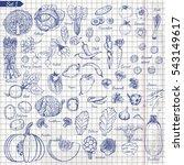 big set of vegetables in sketch ... | Shutterstock .eps vector #543149617