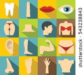 body parts icons set. flat... | Shutterstock .eps vector #543238843