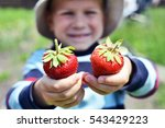 little boy with strawberries | Shutterstock . vector #543429223