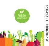 vegetables vector illustration   Shutterstock .eps vector #543434503