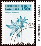 "Small photo of TOGO - CIRCA 1999: A stamp printed in Togo from the ""Flowers "" issue shows Amaryllis belladonna, circa 1999."