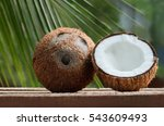 coconut on coconut leaf... | Shutterstock . vector #543609493