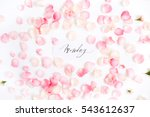Stock photo  monday written with calligraphy and floral pattern with pink rose petals flat lay top view 543612637