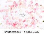 """monday"" written with... | Shutterstock . vector #543612637"