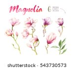 Watercolor Painting Magnolia...