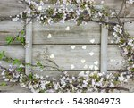 blank wood sign by pink and... | Shutterstock . vector #543804973