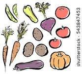 images of colorful vegetables. | Shutterstock .eps vector #543847453