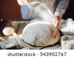 close up view of baker kneading ... | Shutterstock . vector #543902767
