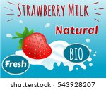 milk strawberry  natural  bio ... | Shutterstock .eps vector #543928207
