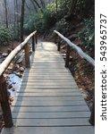 Small photo of Alum Trail Bridge