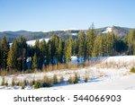 forest in carpathian mountains | Shutterstock . vector #544066903