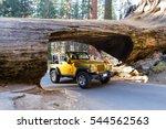 Sequoia Np  California  ...