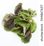 Small photo of bayam , spinach , amaranthus