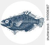 drawn freshwater fish... | Shutterstock . vector #545008387
