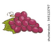 grapes in vintage style | Shutterstock . vector #545123797