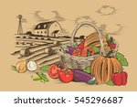 basket of vegetables | Shutterstock .eps vector #545296687