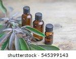 essential oil sage towel spa.... | Shutterstock . vector #545399143