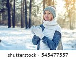 Attractive Woman In Winter  A...
