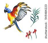wildflower parrot bird in a...   Shutterstock . vector #545484223