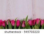 tulip | Shutterstock . vector #545703223