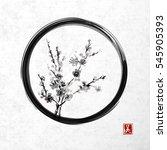 sakura blossom in black enso... | Shutterstock .eps vector #545905393