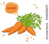 organic vegetables carrots | Shutterstock .eps vector #546040657