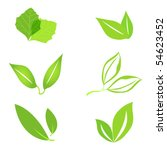 set of green leaves | Shutterstock . vector #54623452
