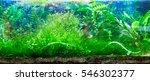 Panoramic Large Aquarium On A...