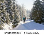 cross country skiers running a... | Shutterstock . vector #546338827
