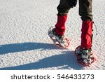 Man With Snowshoes Walking In...