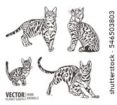 set of cats silhouettes on a... | Shutterstock .eps vector #546503803
