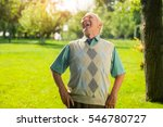 elderly man is laughing. person ... | Shutterstock . vector #546780727