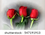 Three Red Rose Buds For...