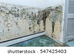 Water Damage Causing Mold...