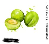 greengage fruit isolated on... | Shutterstock . vector #547454197