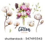 set of hand drawn watercolour... | Shutterstock . vector #547495543