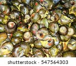 River Snail Curry With Tamarin...