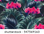 tropical flowers  palm leaves ... | Shutterstock .eps vector #547569163