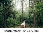 wedding couple are walking  in... | Shutterstock . vector #547579603