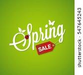 Spring Sale Lettering Design...