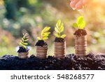 hands watering young  plants... | Shutterstock . vector #548268577